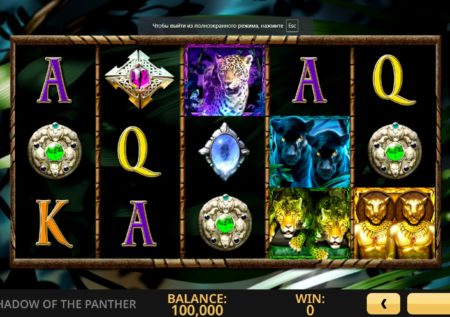 Shadow of the Panther Video Slot